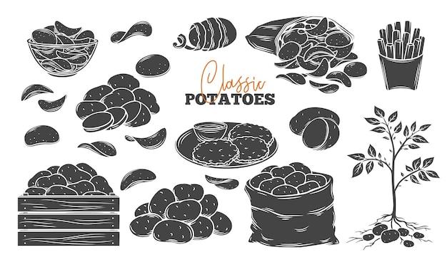 Ícones de produtos de batata com belas ilustrações