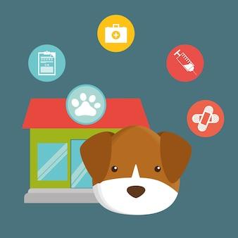 Ícones de serviço de centro de pet care