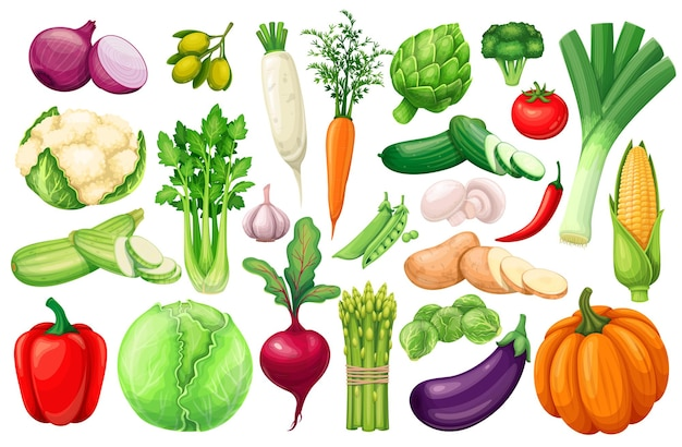 Ícones de vegetais definidos no estilo cartoon. produto agrícola de alcachofra, alho-poró, milho, alho, pepino, pimenta, cebola, aipo, aspargo, repolho Vetor Premium