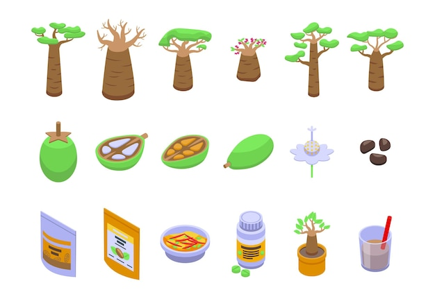 Ícones do baobab definir vetor isométrico. árvore frutífera