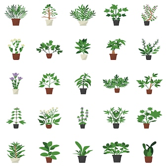 Ícones lisos da planta interna da decoração