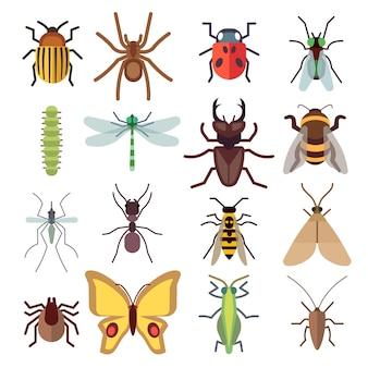 Ícones planas de insetos isolados no fundo branco. bug e mosquito, mosca e aranha. vector illustratio
