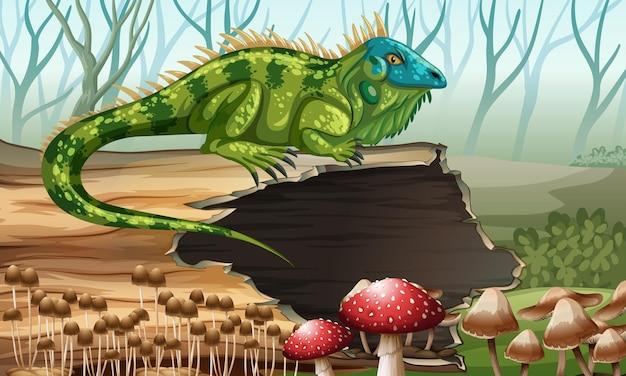 Iguana em pé no tronco