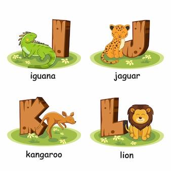 Iguana jaguar leão canguru alfabeto madeira animais