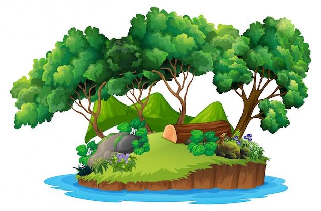 Ilha natureza verde isolado