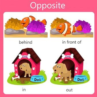 Illustrator opposite set in e out