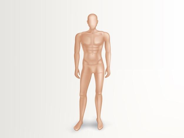 Ilustração 3d do manequim masculino, corpo completo despido do homem.