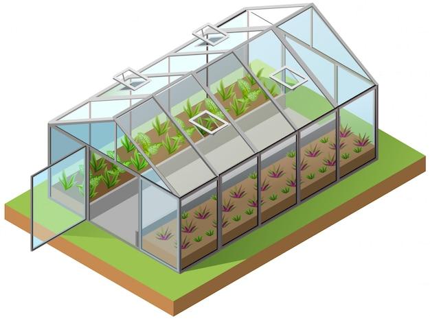 Ilustração 3d isométrica de estufa. cultivo de mudas em estufa