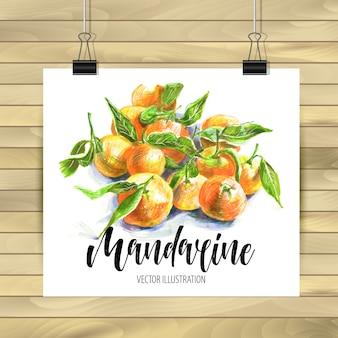 Ilustração abstrata de mandarina