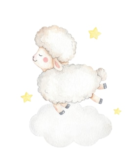 Ilustração adorável bebê ovelha
