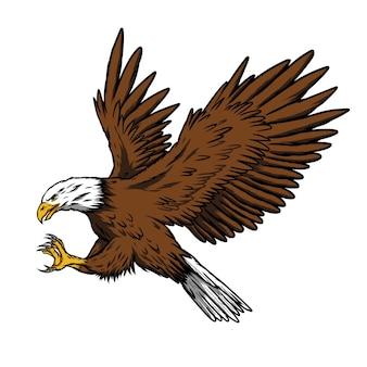Ilustração águia