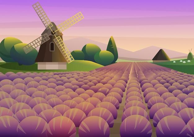 Ilustração colorida com campo de lavanda roxa com moinho de vento antigo no fundo do céu do pôr do sol