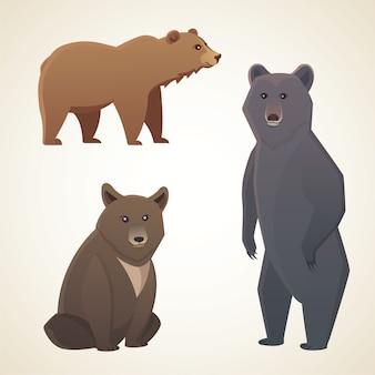 Ilustração com diferentes ursos isolados em desenhos animados de fundo branco