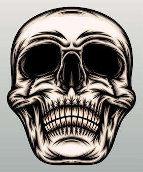 Ilustração da cabeça do crânio.