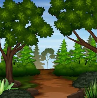Ilustração da cena da floresta com trilha de terra