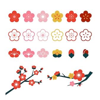 Ilustração da coleção de flores em flor de ameixa