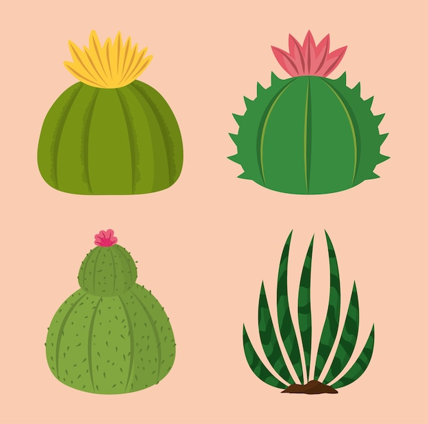 Ilustração da coleção natural da decoração das plantas de cacto