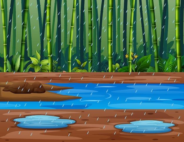 Ilustração da floresta de bambu na estação das chuvas