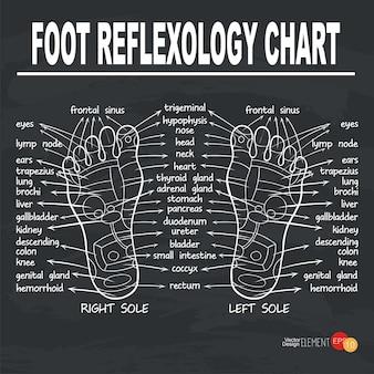 Ilustração da reflexologia do pé