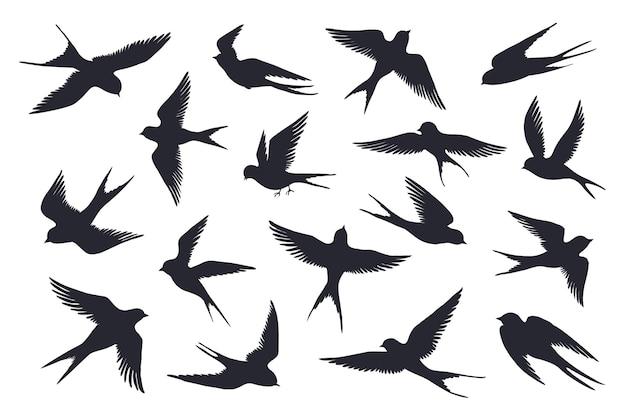 Ilustração da silhueta de pássaros voando