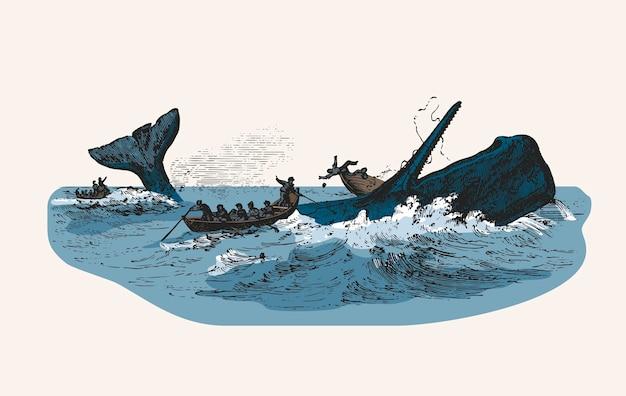Ilustração, de, a, cachalote, enquanto, atacando, barco pesca