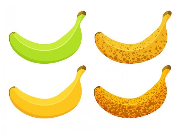Ilustração de amadurecimento de banana, isolado no fundo branco. conjunto de bananas de cores diferentes, verdes maduras a marrons maduras.