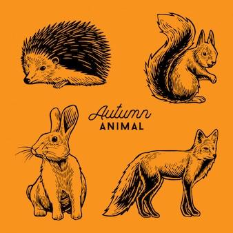 Ilustração de animal de outono