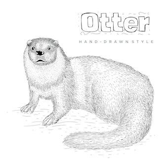 Ilustração de animal desenhado à mão de lontra