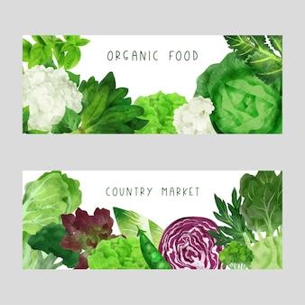Ilustração de aquarela desenhada à mão para banner de vegetais de verão