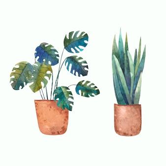 Ilustração de aquarela em vaso caseiro de plantas tropicais