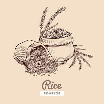 Ilustração de arroz
