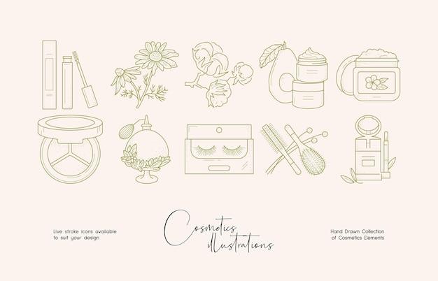 Ilustração de arte em linha de cosméticos botânicos para identidade de marca