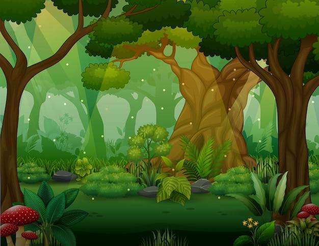Ilustração de árvores arbustos na floresta