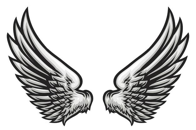 Ilustração de asa desenhada de mão