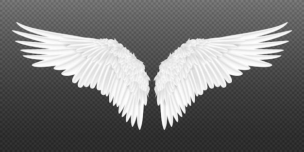 Ilustração de asas realistas