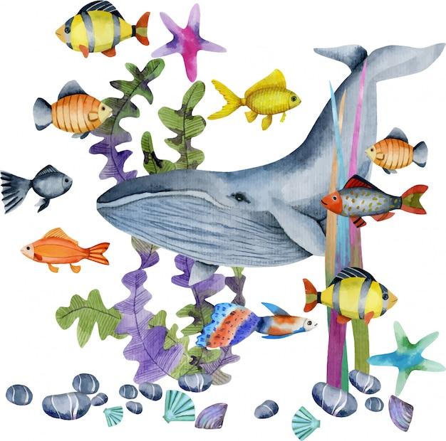 Ilustração de baleia e peixes em aquarela