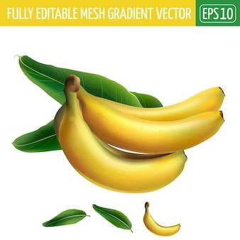 Ilustração de banana em branco