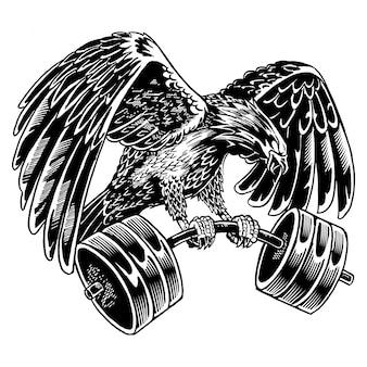 Ilustração de barbell eagle