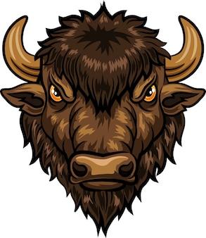 Ilustração, de, cabeça, bisonte, mascote