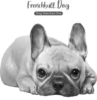 Ilustração de cachorro bull francês