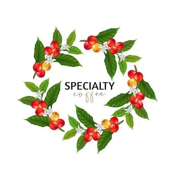 Ilustração de café especial, ramos de árvore de café com folhas e frutos