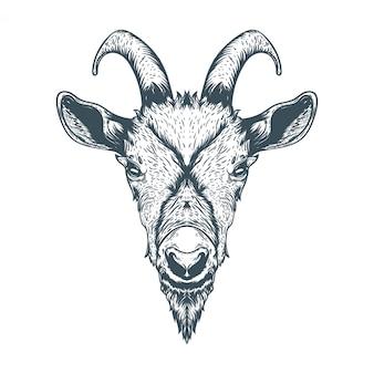 Ilustração de cara de cabra desenhada de mão