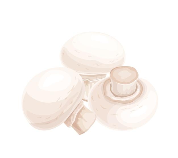 Ilustração de champignon em estilo caroon