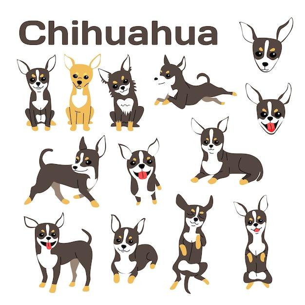 Ilustração de chihuahua, poses de cão, raça de cão