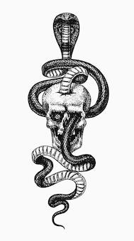Ilustração de cobra no crânio da cobra indiana ou de réptil venenoso de óculos ou asiática ou binocelada