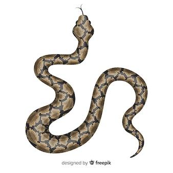 Ilustração de cobra realista desenhada de mão
