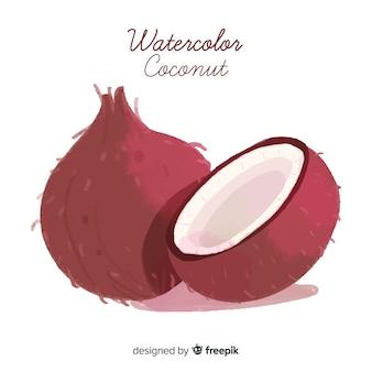 Ilustração de coco em aquarela
