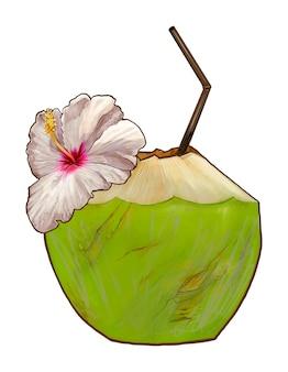 Ilustração de coco jovem fresco tropical