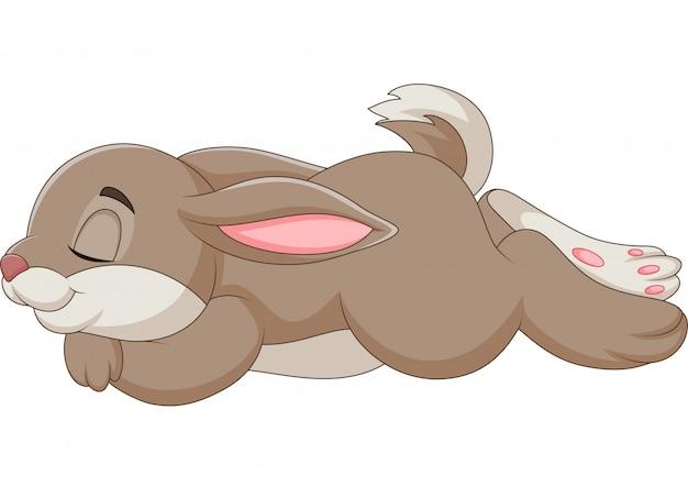 Ilustração de coelho dormindo isolado no fundo branco