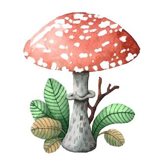 Ilustração de cogumelo